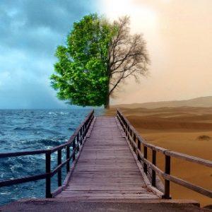 perceptie optimist-pesimist
