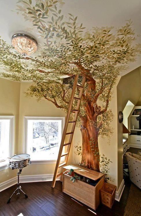 copac in casa