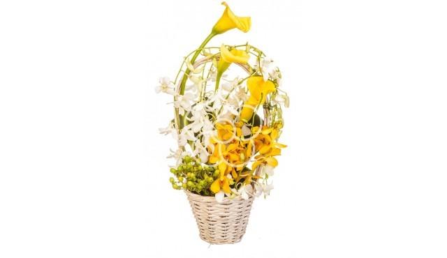 aranjament-de-flori-business
