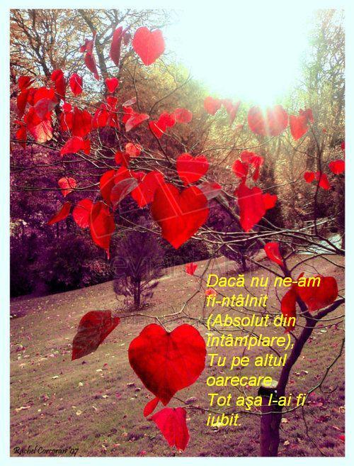 inimi iubire