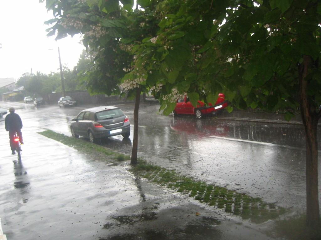 furtuna-pe-strada-1024x768