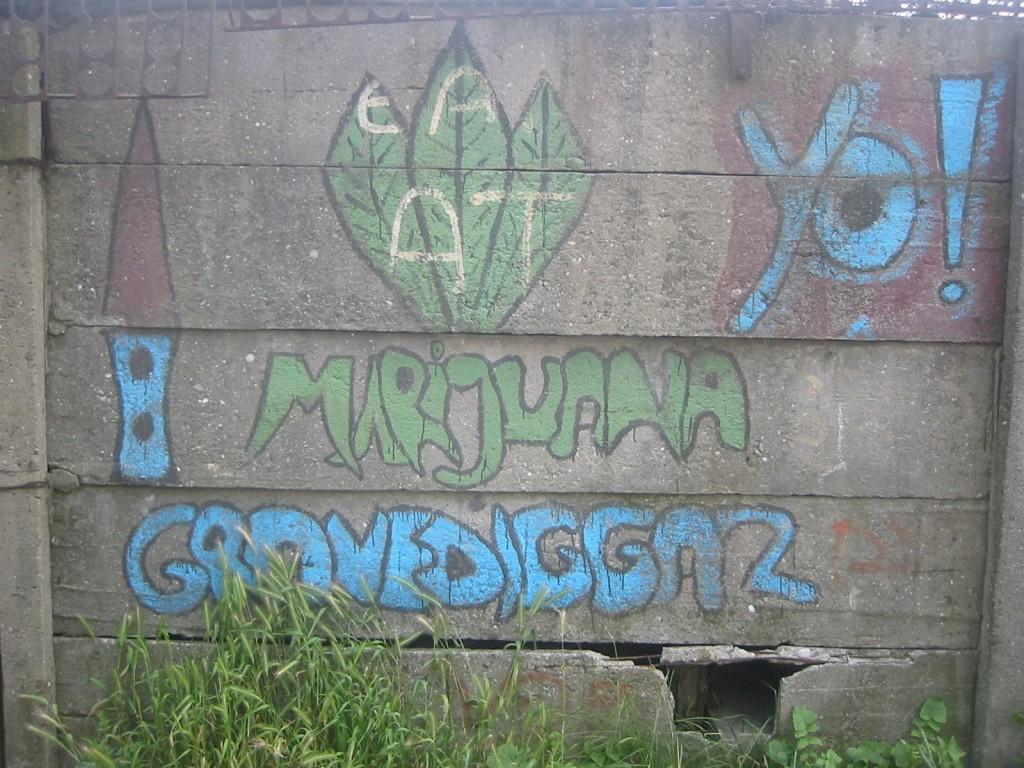 graffiti pe zid