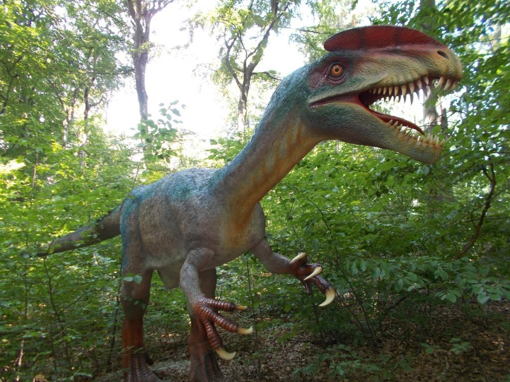 dinozauri-dino-park-rasnov1-1024x768