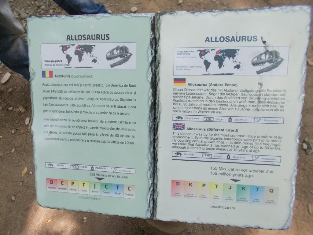 placuta-explicativa-dinozaur-dino-park-rasnov-1024x768