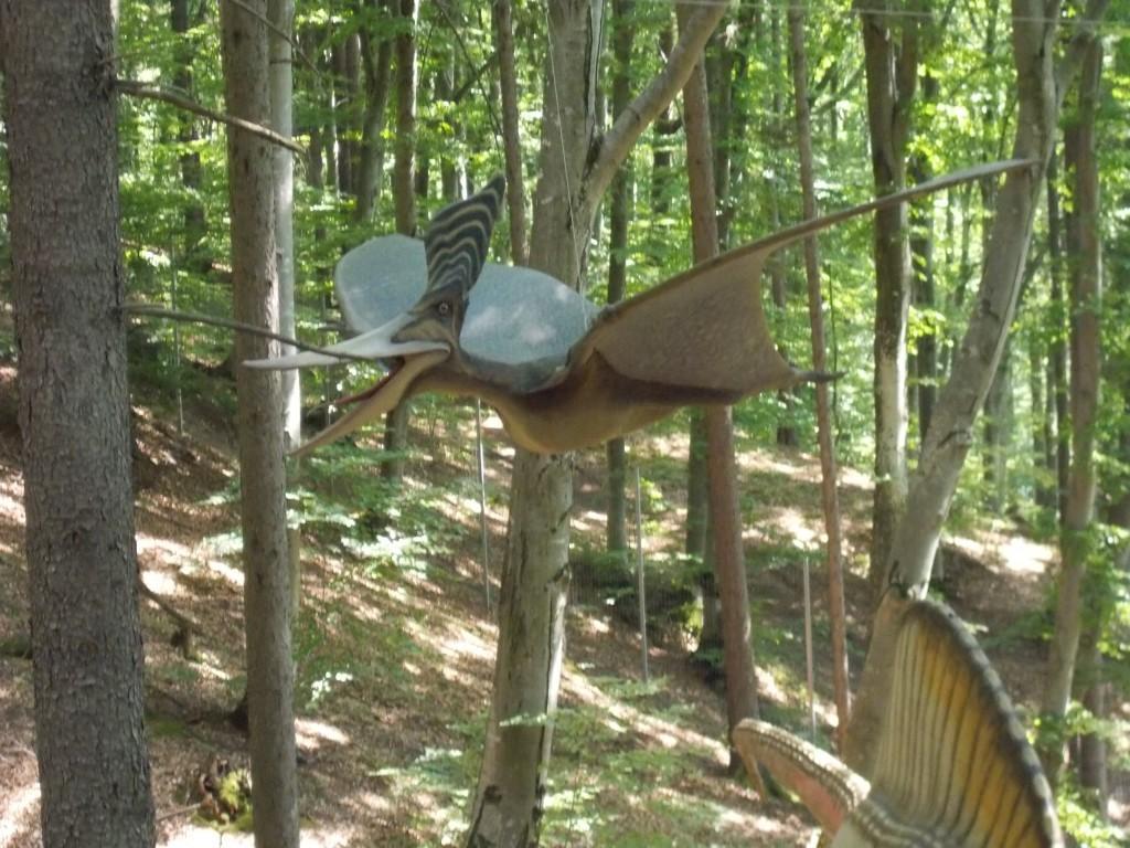 pteranodon-dinozaur-dino-park-rasnov1-1024x768