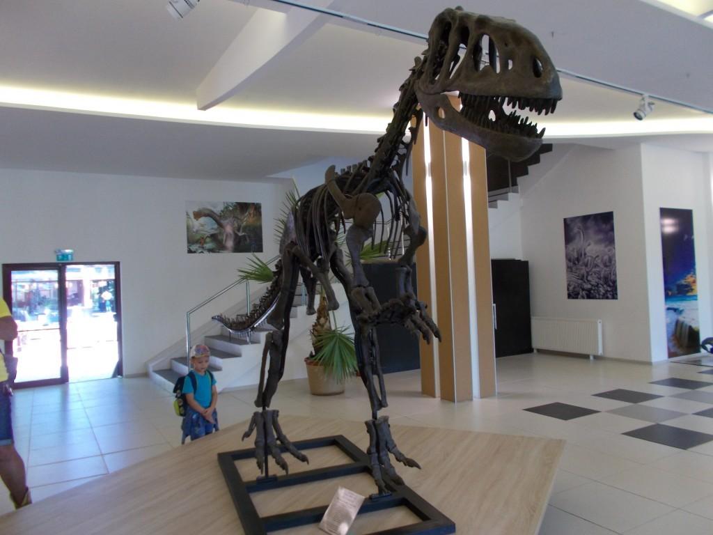 schelet-de-dinozaur-dino-park-rasnov-1024x768