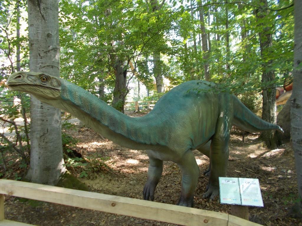 traseu-dinozaur-dino-park-rasnov-1024x768