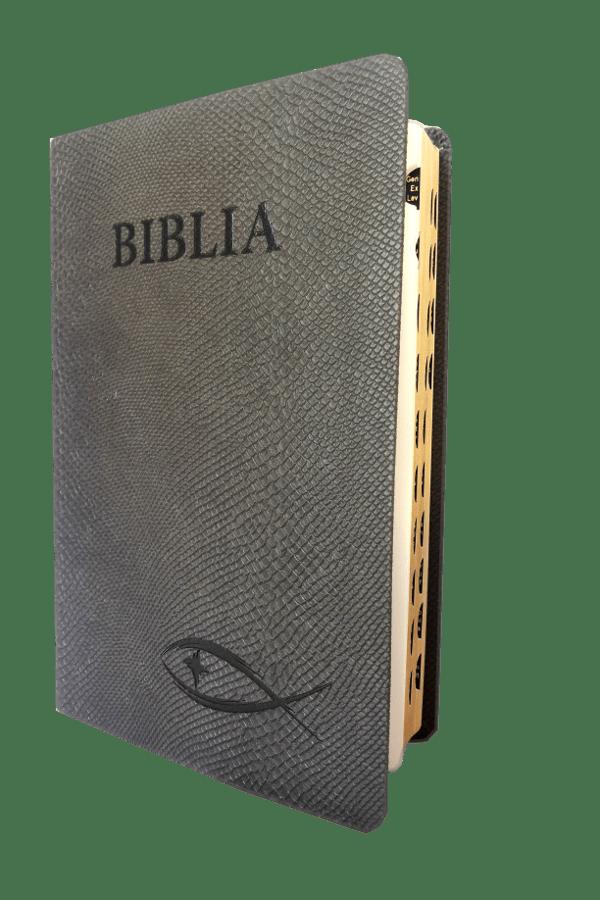 biblia ntr