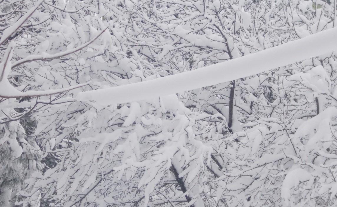 iarna in imagini frumoase 12