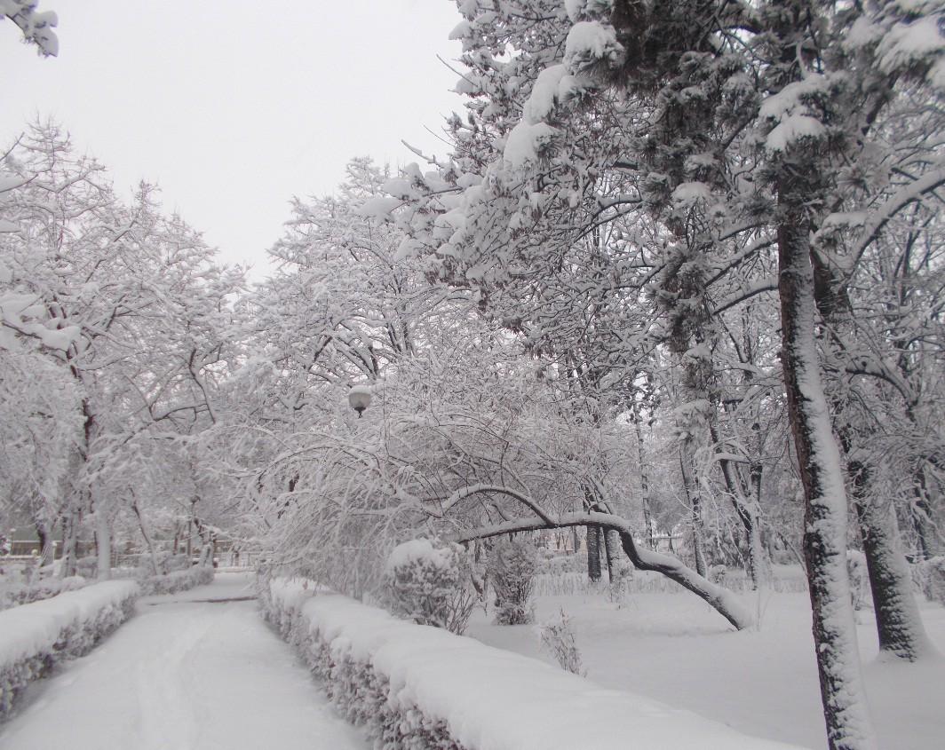 iarna in imagini frumoase 18