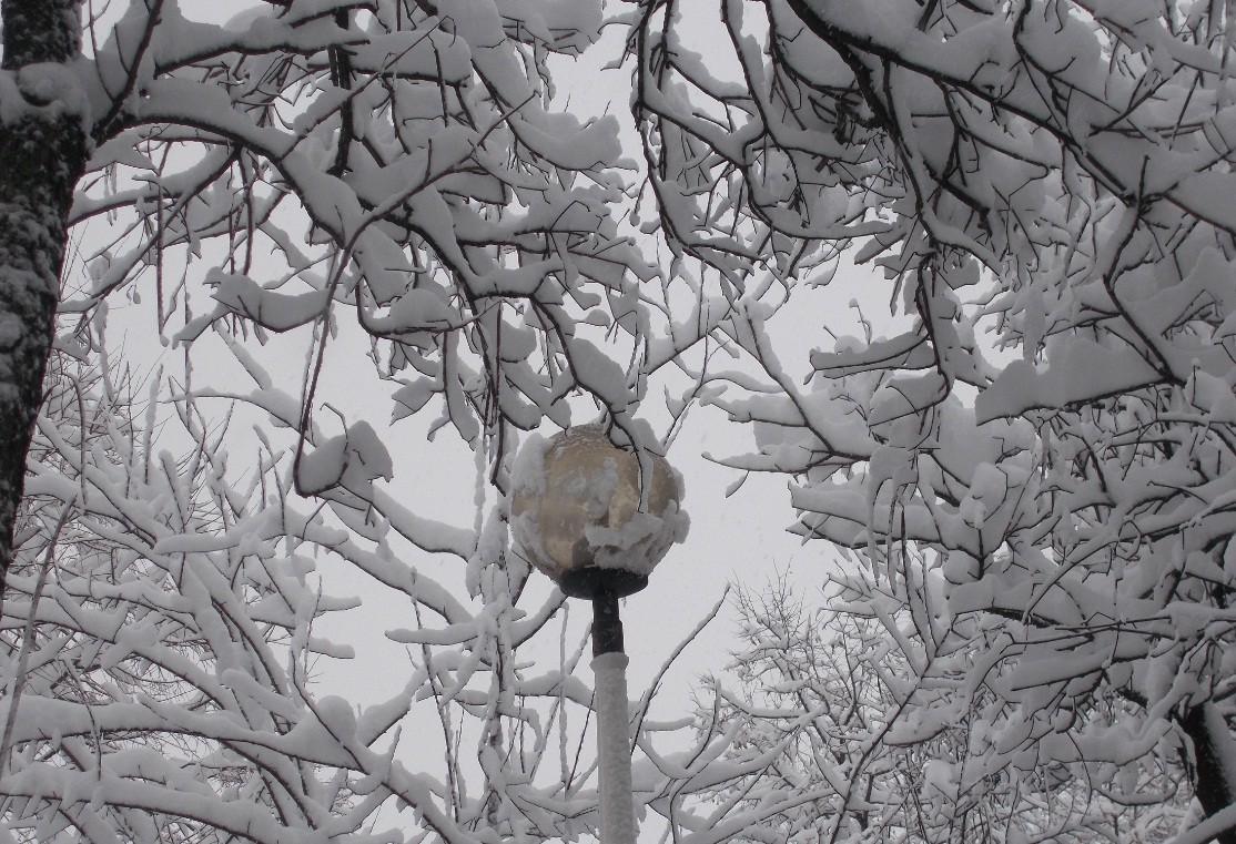 iarna in imagini frumoase 4