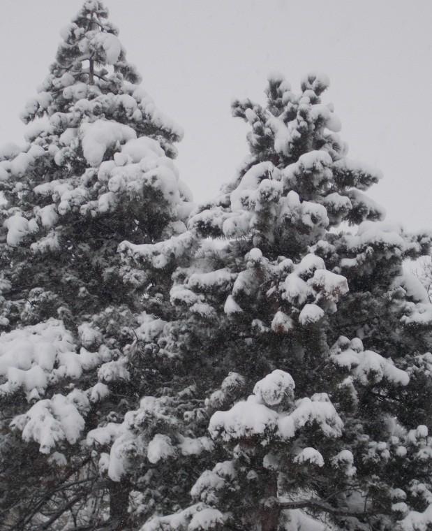 iarna in imagini frumoase 7