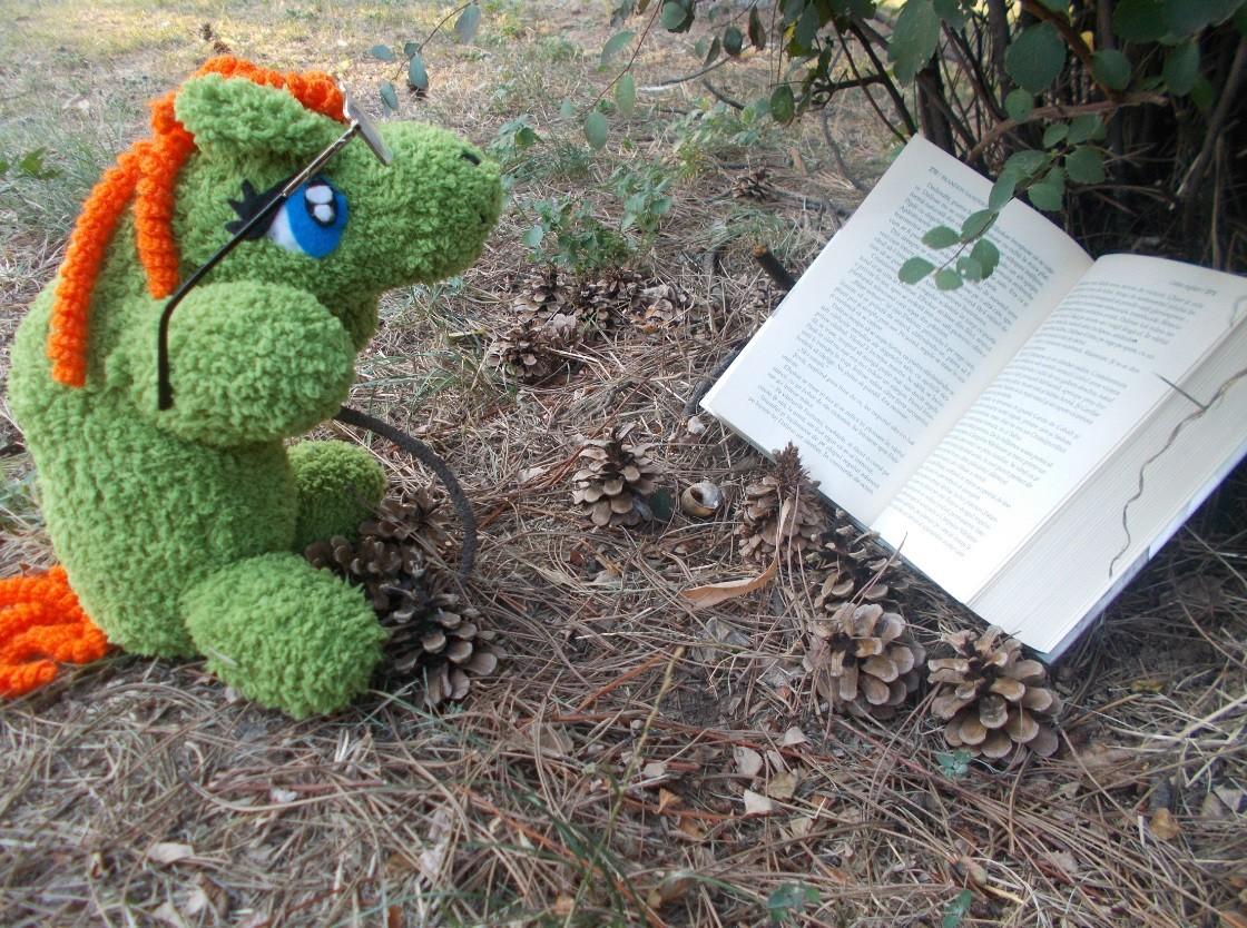 citind-in-iarba