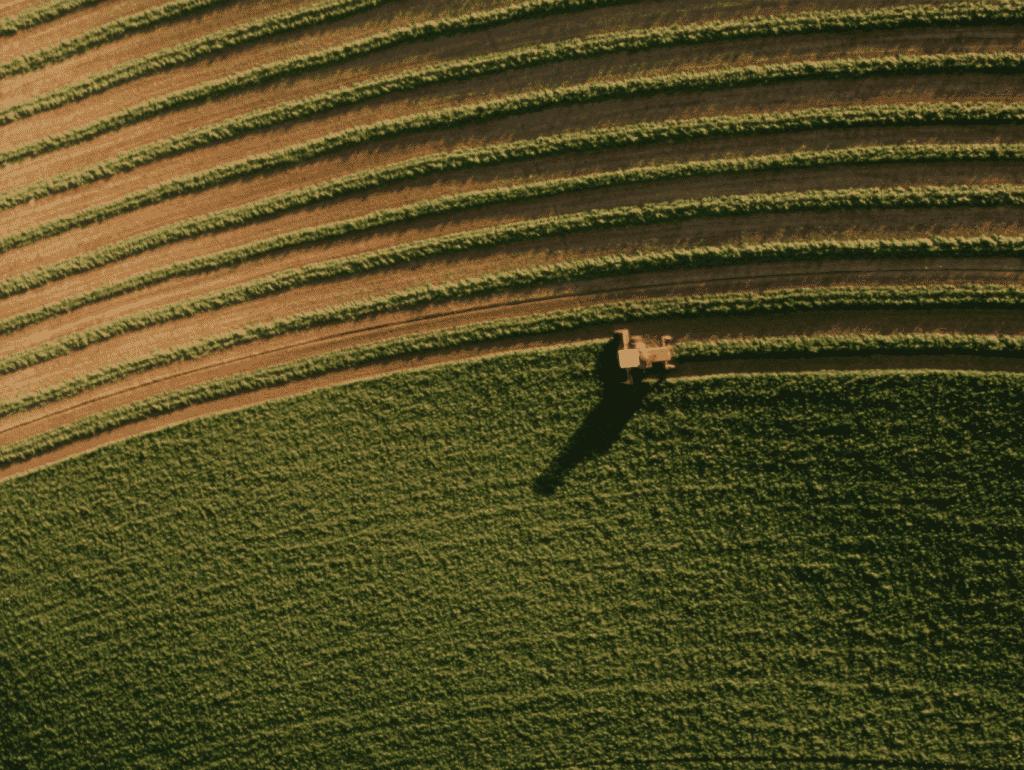 filmari-cu-drona-in-agricultura