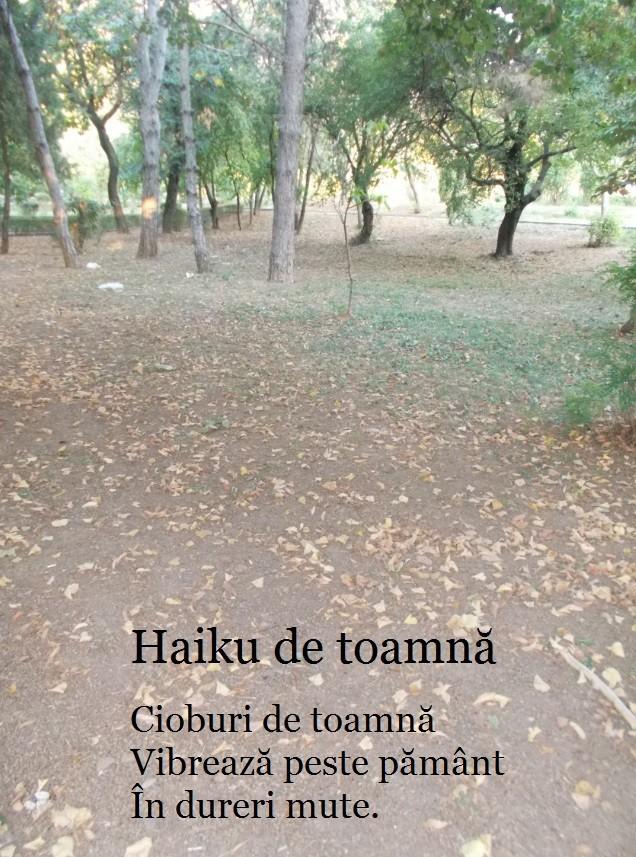 haiku-toamna