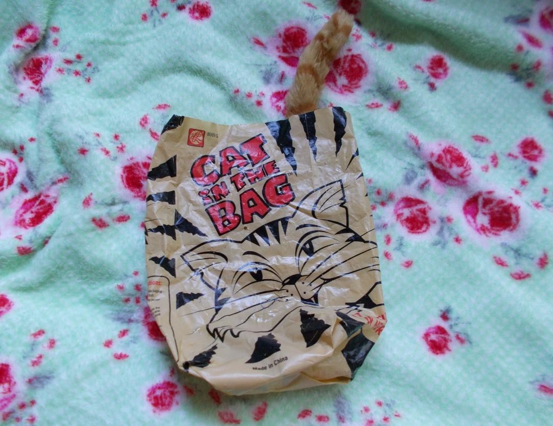 jucarie coada de pisica