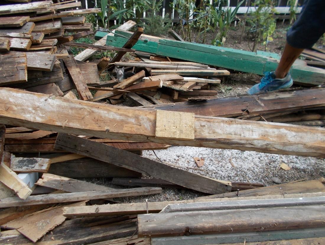 pisoi in lemne