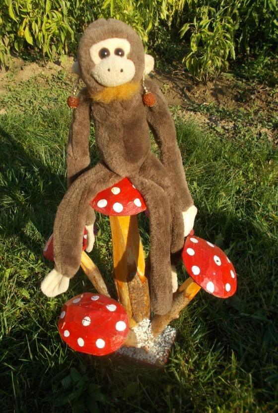 maimuta-ciupercuta