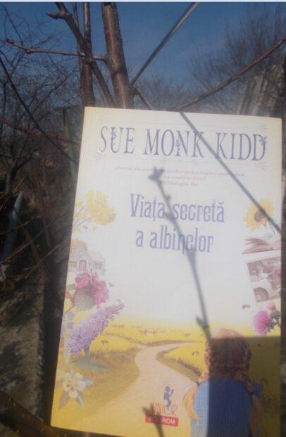 viata secreta a albinelor carte